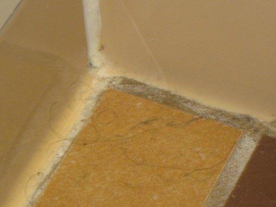 Disney's Coronado Springs Resort: Hair on bathroom floor that was never cleaned up after a week