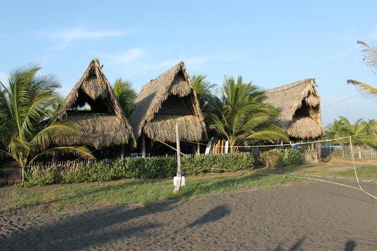 Paredon Surf House : Beachfront bungalows