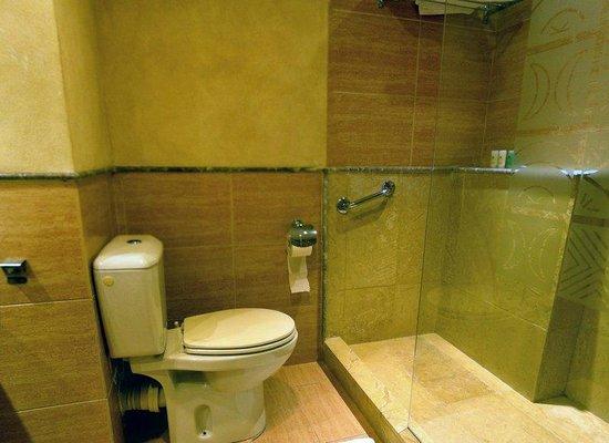 Hotel Atlas Asni : Washroom area