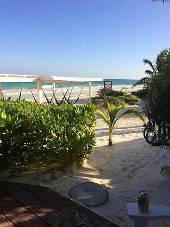 Coco Tulum : View from our little cabana (#6)