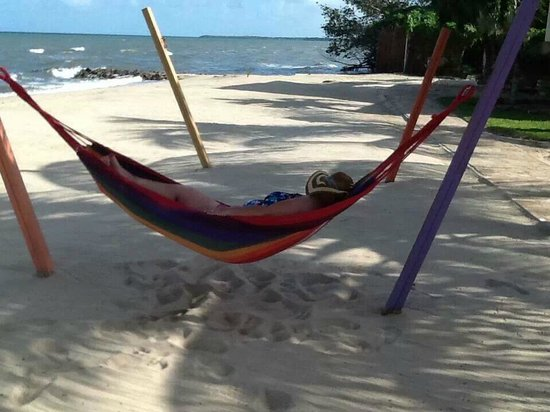 Hopkins Bay Resort: Chillin at the beach