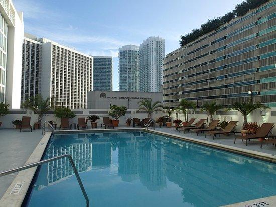 Courtyard Miami Downtown/Brickell Area : Poolen på sjunde våningen
