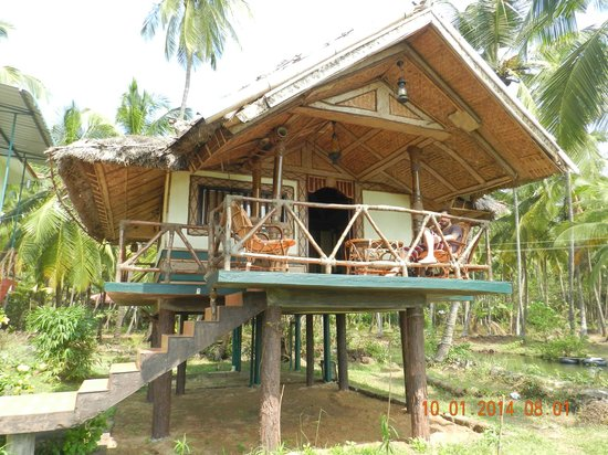 Blue Mermaid Homestay: paradise!