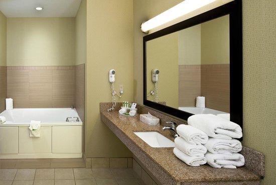 Holiday Inn Express & Suites Saginaw : Bathroom of 2 Room Whirlpool Suite