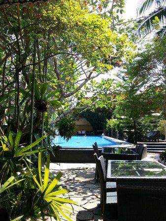 Flower Garden Hotel: la piscine