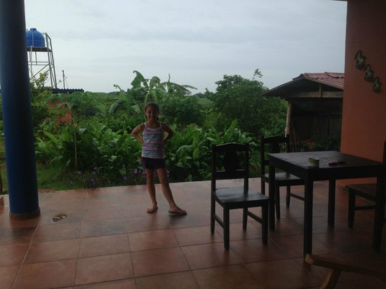 Hacienda Dona Carmen: view to the farm from the hamac