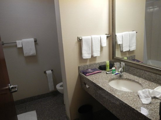 Drury Inn & Suites Orlando: Banheiro