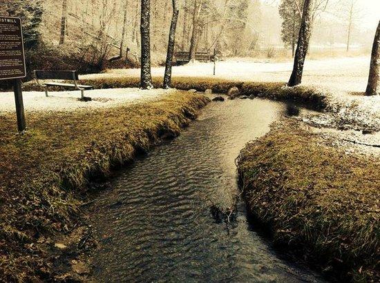 Big Ridge State Park: Bg Ridge State Park in February