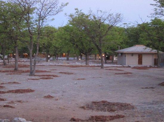 Halali Resort: Partie des logements en dur