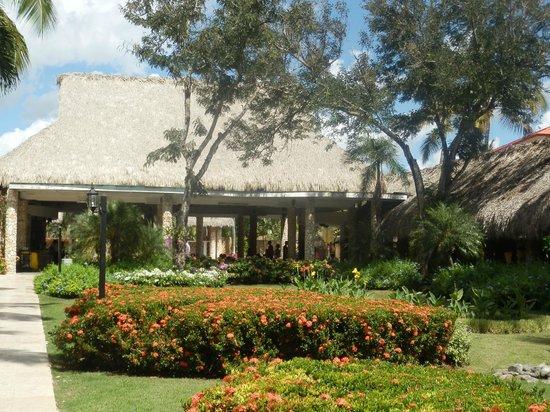 Viva Wyndham Dominicus Beach: giardino