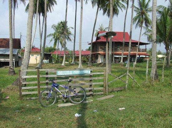 Soluna Guest House: Back path