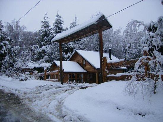 Nguillatun Cabanas & Bungalows : Entrada das cabanas