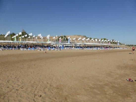 Terrace Elite Resort : schöner Strandabschnitt