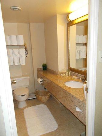 Holiday Inn Toronto Yorkdale : clean bathroom