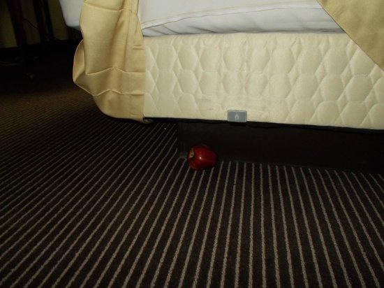 Holiday Inn Toronto Yorkdale: apple under bed??