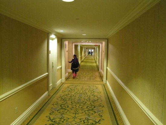 The Mayflower Hotel, Autograph Collection: Hallways