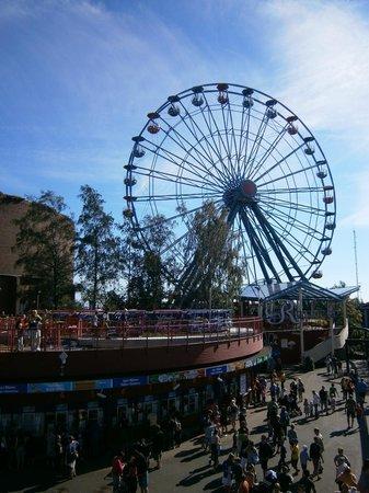 Linnanmaki Amusement Park : Колесо обозрения