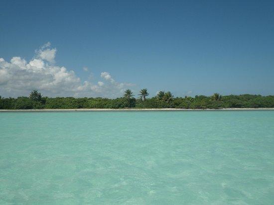 Espacio Natura : piscine naturelle
