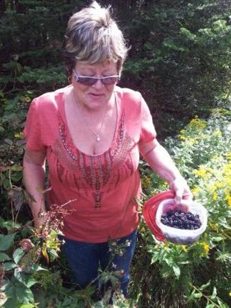 Abbie's Garden Bed & Breakfast: blackberry picking