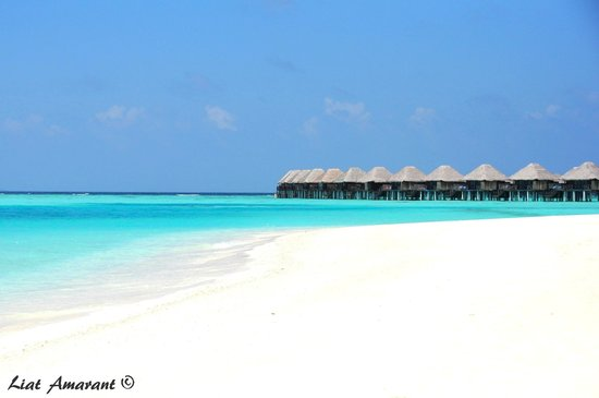 Sun Aqua Vilu Reef: גן-עדן