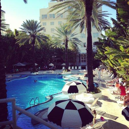 The Redbury South Beach : Pool across the street