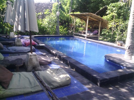 Wood Stock Home Stay: lovely pool