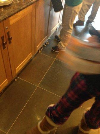 Hampton Inn Danbury: Food all over the floor
