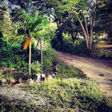 Chalet Tropical Village: Walk to the beach
