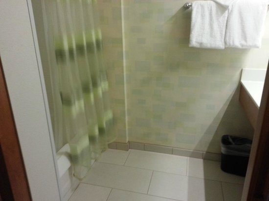 SpringHill Suites Salt Lake City Airport : The shower room