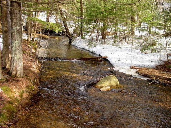 Forest Glen Inn: Early spring snow melt