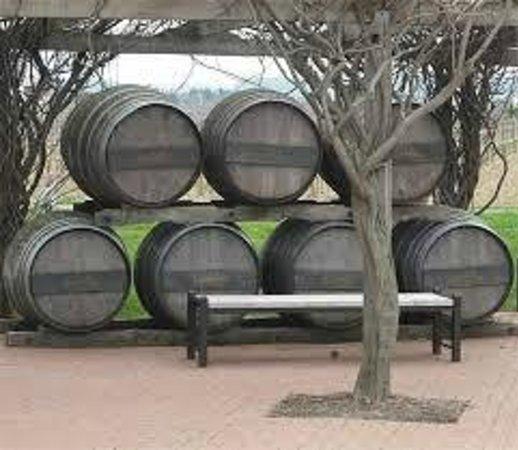 Niagara Fun Tours: Vineyard