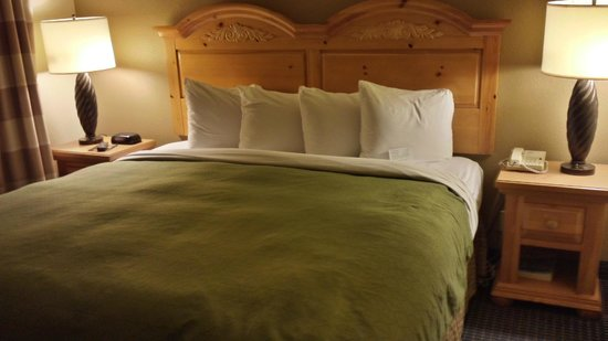 Comfort Inn & Suites Lithia Springs: Suite Rm 410 Spacious king size bed, small pillows