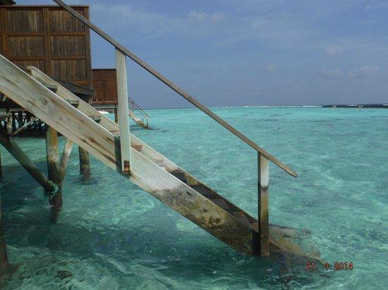 Veligandu Island Resort & Spa: Steps down into the sea