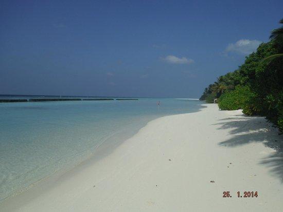 Veligandu Island Resort & Spa: Beautiful beaches