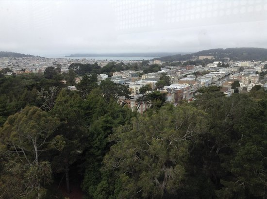 de Young Museum : View from observation tower