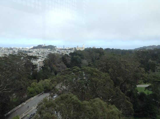 de Young Museum : View from observaton tower