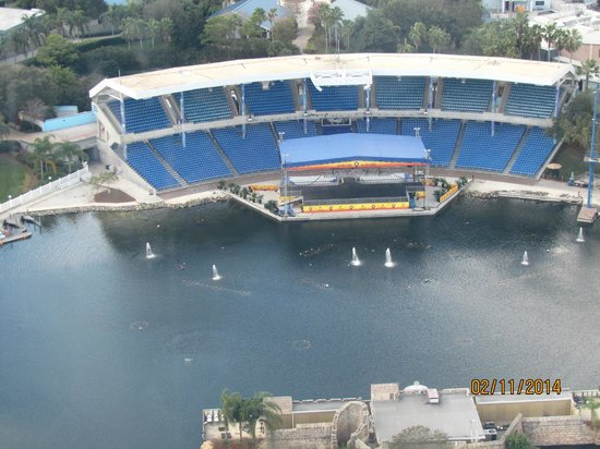 SeaWorld Orlando: Shamú cerrado por mantenimiento