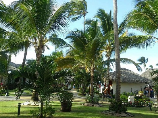 Grand Bahia Principe Punta Cana: View from our patio