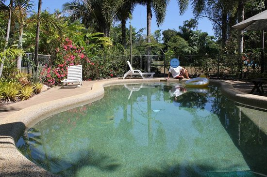 Hibiscus Lodge: Pool