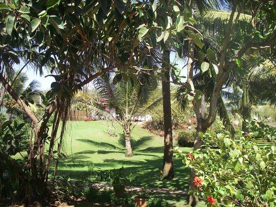 Chalston Beach Resort : Beautiful garden