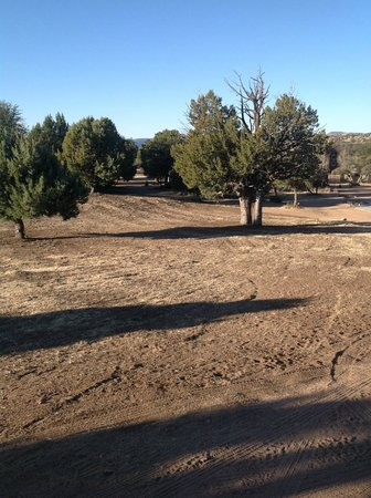 Juniper Well Ranch: View from front porch.