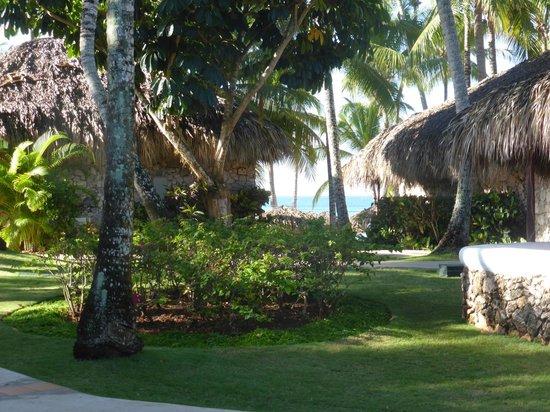 Dominicus Beach: Les jardins de l'hotel