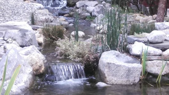 Silver Pines Lodge : Waterfalls flowing into the pond.
