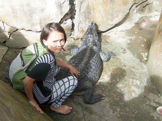 Cebu Zoo: Jury & crocodile