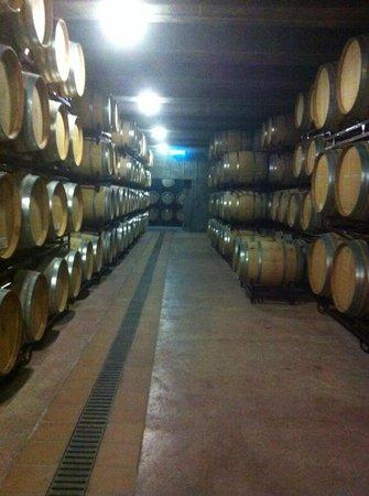 Bodegas Enrique Mendoza: barrels