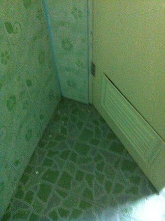 D's Corner & Guesthouse : Dirty bathroom