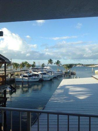 Postcard Inn Beach Resort & Marina : View from room jan/13