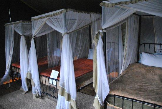 Ang'ata Camp Serengeti: Tenda Tripla