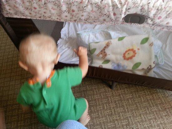 Radisson Hotel Duluth - Harborview: hole in crib