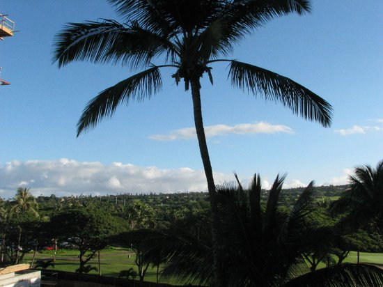 Hyatt Regency Maui Resort and Spa: View to the right from our obtructed view room, still quite nice!